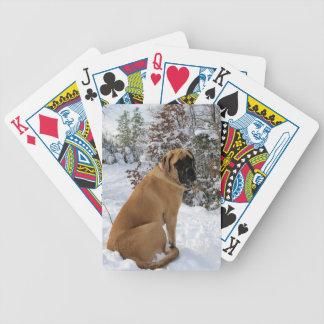 Mastiff Snow Pose - playing cards