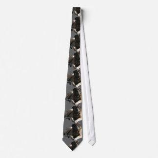 Mastiff tie