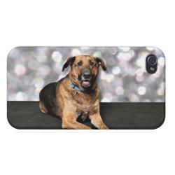 Case Savvy iPhone 4 Matte Finish Case with Mastiff Phone Cases design
