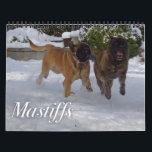 """Mastiffs Calendar<br><div class=""""desc"""">Calendar with candid photos of English Mastiffs.</div>"""