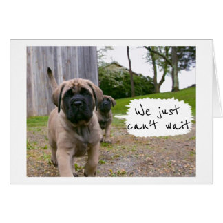 MASTIFF'S JUST CAN'T WAIT TO SAY *HAPPY BIRTHDAY* CARD