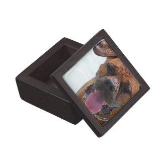 Mastín francés caja de regalo de calidad