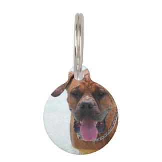 Mastín francés placas de mascota