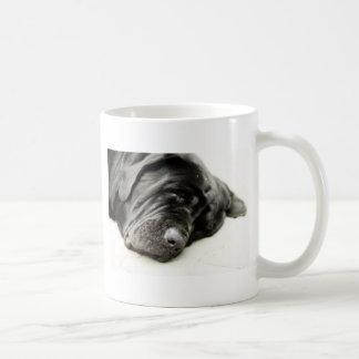Mastín napolitano tazas de café