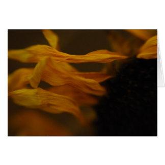 matahari del bunga tarjeta de felicitación
