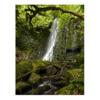 Matai Falls, Catlins, South Otago Postcard