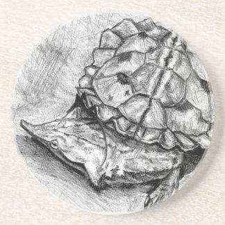 Matamata turtle sandstone drink coaster