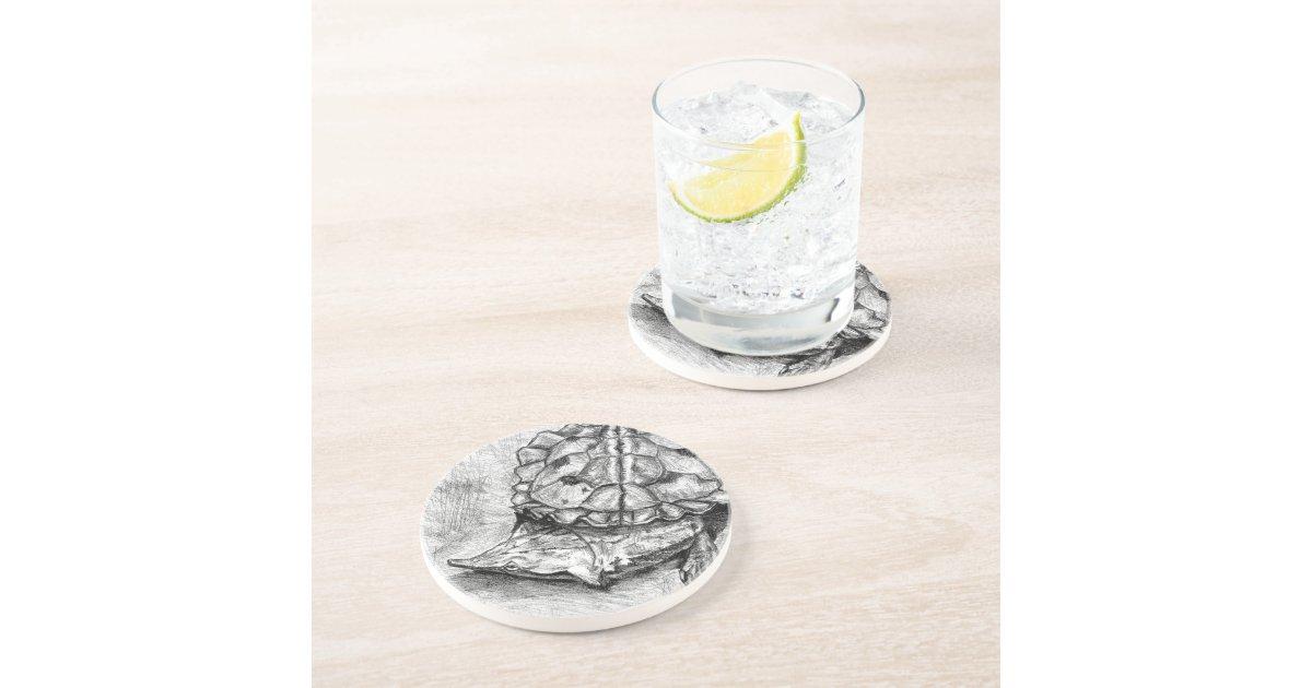 Matamata turtle sandstone drink coaster zazzle - Sandstone drink coasters ...