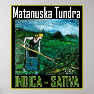 MATANUSKA TUNDRA INDICA SATIVA POSTER