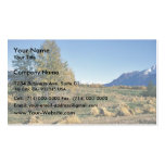 Matanuska Valley Hay Field Business Cards