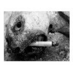 Matanzas que fuman postal