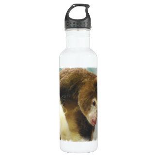 Matchies Kangaroo 24oz Water Bottle