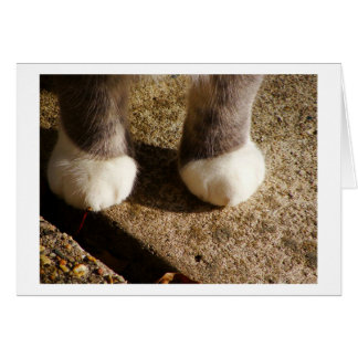 Matching Socks Card
