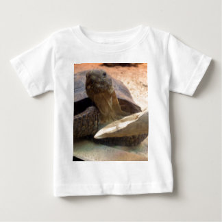 Materia amistosa del diseñador de la tortuga del camisas