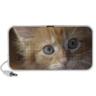 Materia del gatito altavoces de viajar