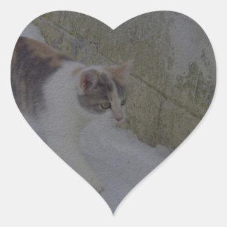 Materia del gato pegatina en forma de corazón