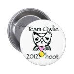 materia del ravvie teamowlie2012 pins
