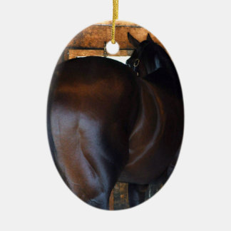 Materiality Florida Derby Winner Ceramic Ornament