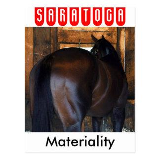 Materiality Florida Derby Winner Postcard