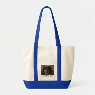 Materiality Florida Derby Winner Tote Bag