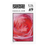 Materialized red rose - Size M Vertical Postage Stamps