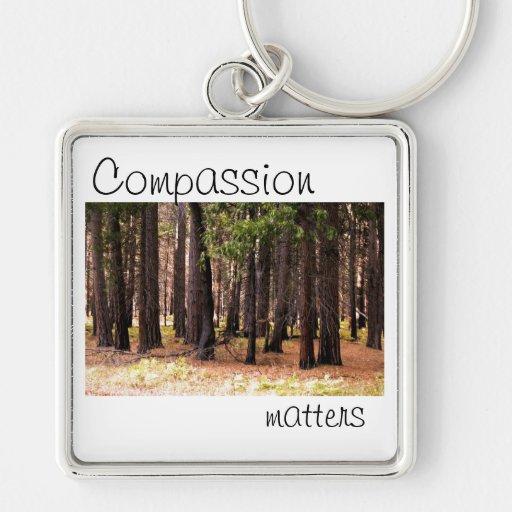 Materias de la compasión llavero cuadrado plateado