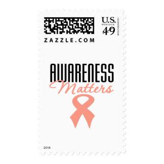 Materias de la conciencia del cáncer endometrial sello