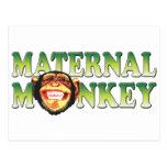 Maternal Monkey Postcard