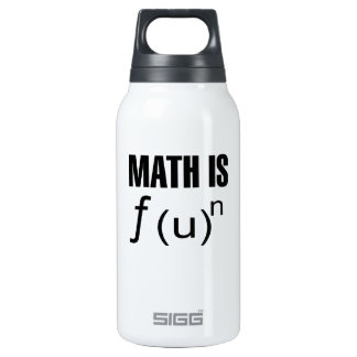 Math Is Fun Insulated Water Bottle