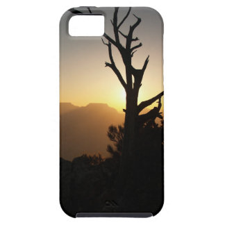 Mather Pt Sunrise iPhone SE/5/5s Case