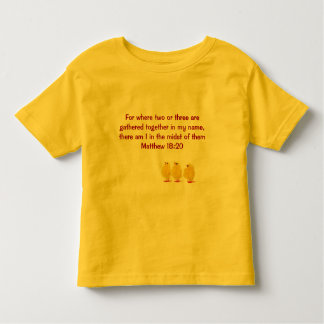 mathew  18:20 kids shirt