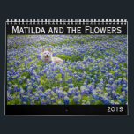 "Matilda and the Flowers 2019 Calendar<br><div class=""desc"">Matilda is my beloved pup of almost 14 years. She was a stray who I found living under my house--under my house!--in rural Texas. No microchip. No info at the shelters. No family looking for her, though I posted countless flyers and searched everywhere. I didn&#39;t feed her or let her...</div>"