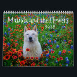 "Matilda and the Flowers Calendar<br><div class=""desc"">Matilda is my beloved pup of almost 13 years. She was a stray who rescued me when she took shelter in my rural home in Texas. She is smart and sweet, and always ready with a smile. I started photographing her on our adventures around Texas, and eventually, we made our...</div>"