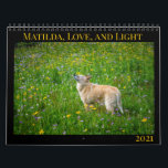 """Matilda, Love, and Light 2021 Calendar<br><div class=""""desc"""">Every year,  Matilda shares some of her favorite images with her friends,  family,  and fans. All proceeds from the sale of this calendar go to benefit homeless dogs and cats at Austin Pets Alive!</div>"""