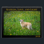 "Matilda, Love, and Light 2021 Calendar<br><div class=""desc"">Every year,  Matilda shares some of her favorite images with her friends,  family,  and fans. All proceeds from the sale of this calendar go to benefit homeless dogs and cats at Austin Pets Alive!</div>"