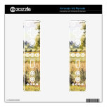 Matin a Eragny by Camille Pissarro Wii Remote Decal