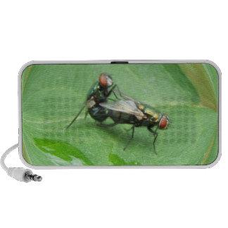 Mating flies speaker