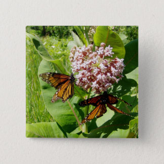 Mating Monarch Butterfly on Milkweed Photo Button
