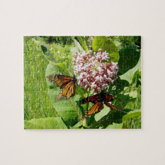 Mating Monarch Butterfly on Milkweed Photo Jigsaw Puzzle