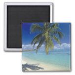 Matira Beach on the island of Bora Bora, Society Magnets