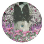 Matisse in Flowers - White & Black Papillon Dog Party Plate