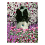 Matisse in Flowers - White & Black Papillon Dog Postcards