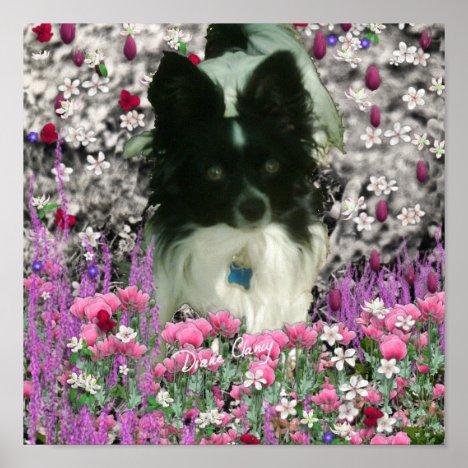 Matisse in Flowers - White & Black Papillon Dog Poster