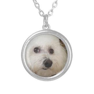 Matisse the Bichon Frise pup - necklace