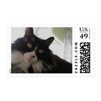 Matisse Watches Over Me Postage Stamp
