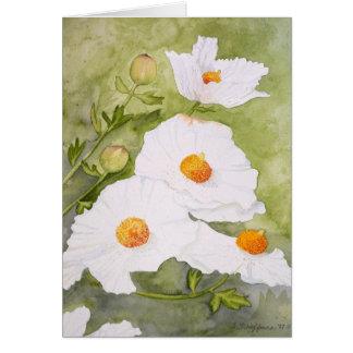 Matlilija Poppies I card
