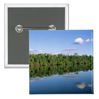 Mato Grosso State, Amazon, Brazil. Forested Button