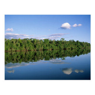 Mato Grosso State, Amazon, Brazil. Forested Postcards