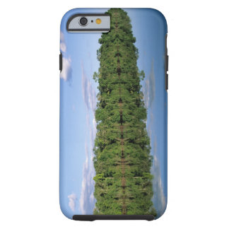 Mato Grosso State, Amazon, Brazil. Forested Tough iPhone 6 Case