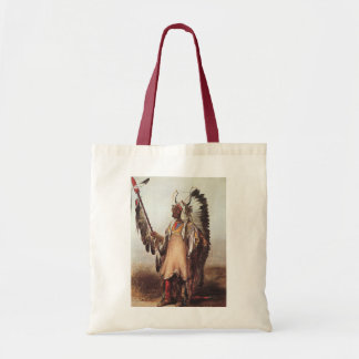 Mato-Tope, A Mandan Chief Portrait by Karl Bodmer Tote Bag